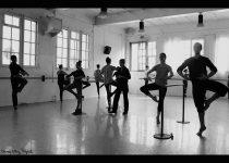 Area, Espai de Dansa i Creació
